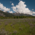 teton-village-land-real-estate